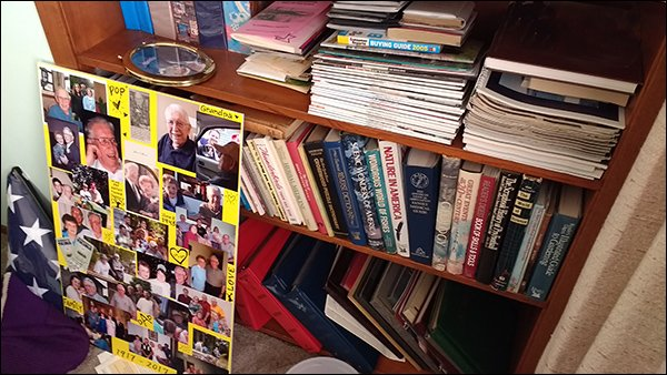 Albums, Books, and Magazines