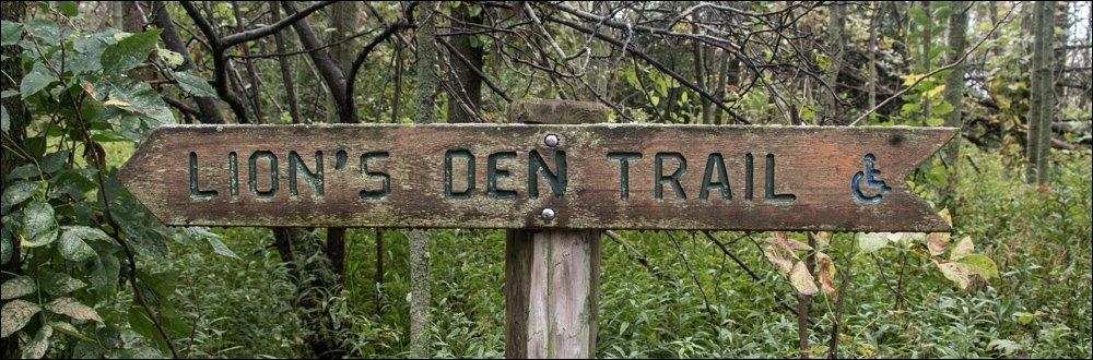 Lion's Den Gorge Nature Preserve