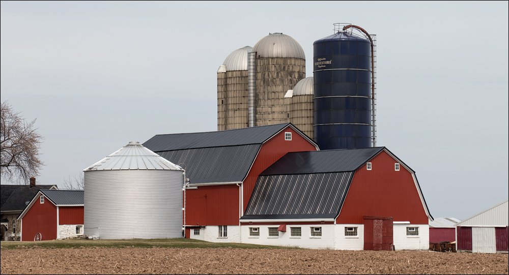 A Favorite Barn